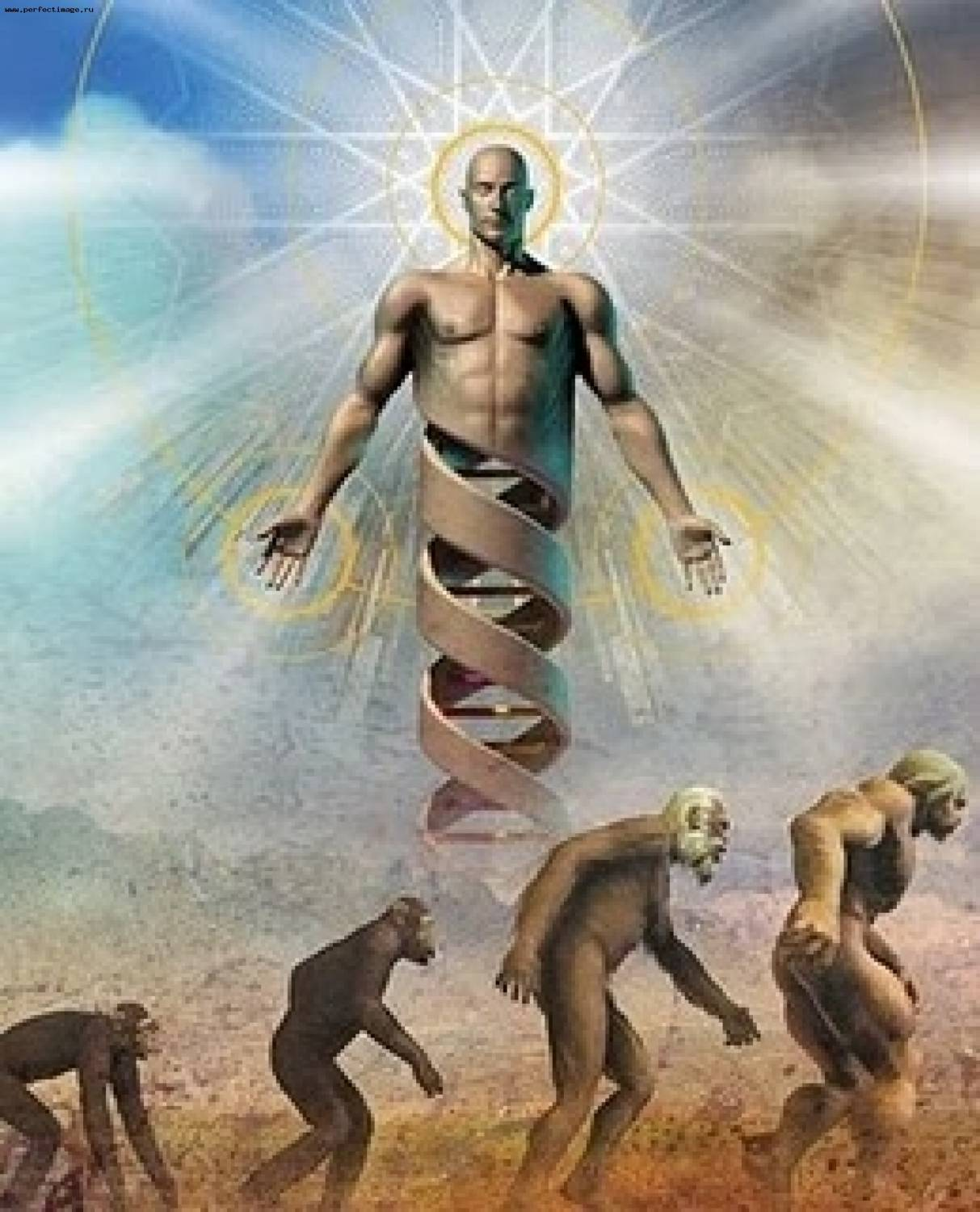 creation evolution and intervention which theory Because evolution and the big bang—like more ancient beginning-of-the-world accounts, in genesis and elsewhere—are creation stories, and that is the name of scully's class.